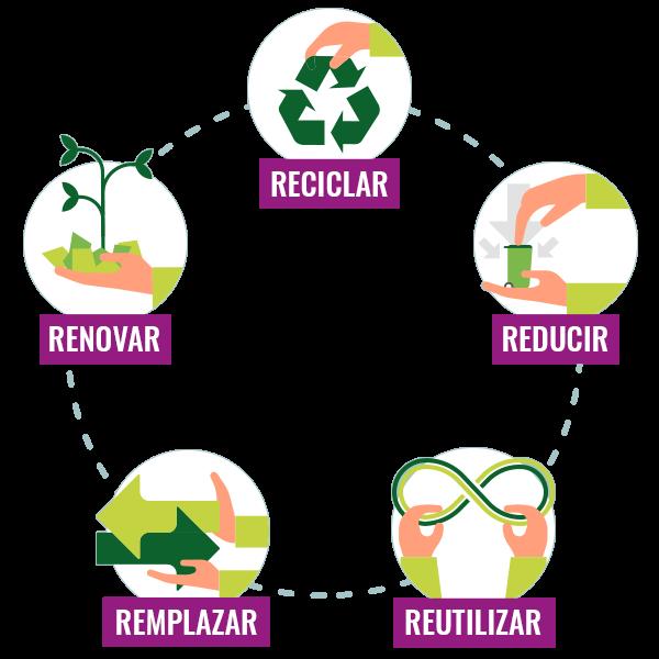 Las 5-R del embalaje para la reducción de residuos | RAJA®