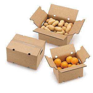 Cajas de cartón especiales para el porte de frutas y verduras