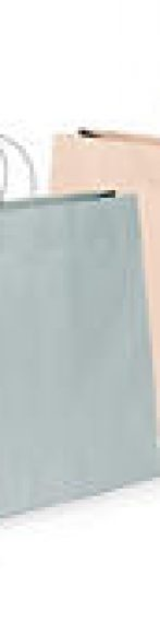 bolsa de papel bicolor