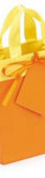 bolsa de papel charol mate bicolor