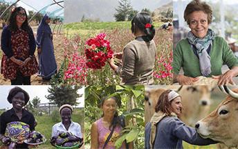 """10 nuevos proyectos del programa """"Mujeres y Medio Ambiente"""""""